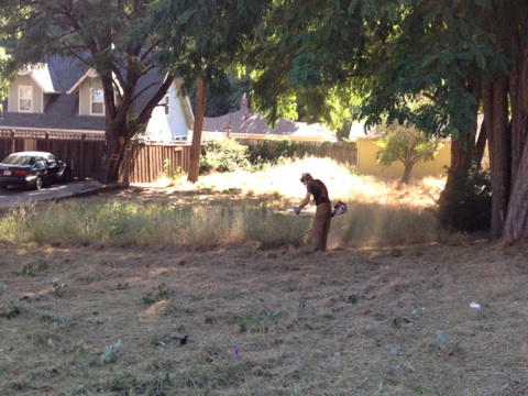 Cutting the weeds behind Jenna Sue's Cafe